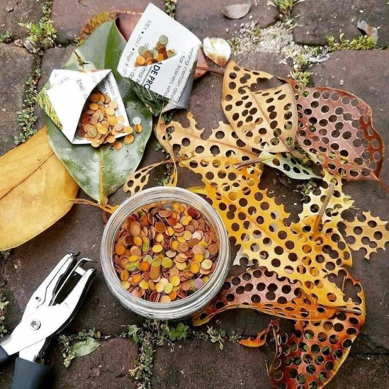 Zdjęcie przedstawia kółeczka confetti wycięte z jesiennych liści.