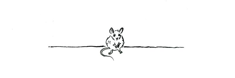 Rysunek przedstawiający małą myszkę czekającą na ciąg dalszy opowieści.